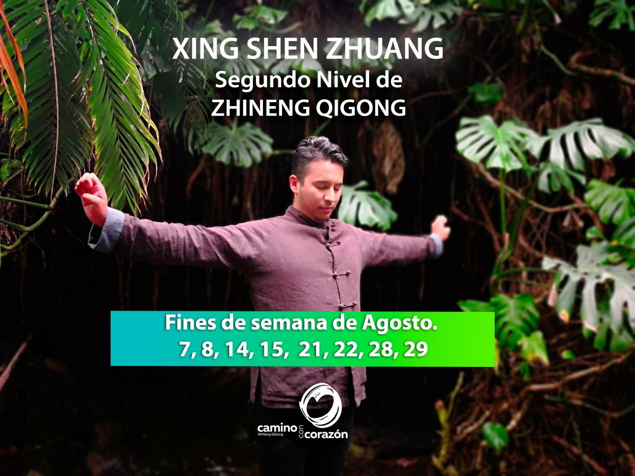 Curso de Segundo Nivel de Zhineng QiGong en Línea Agosto