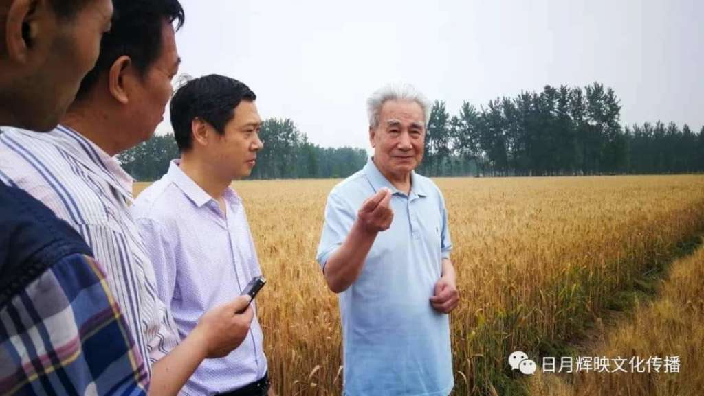 Dr. Pang He Ming. Zhineng QiGong,  Centro Huaxia Hospital sin medicinas mas grande del mundo en China. Camino con Corazón.